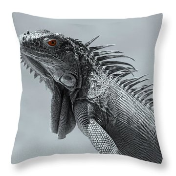 Throw Pillow featuring the photograph Pugnacious by Patrick Witz