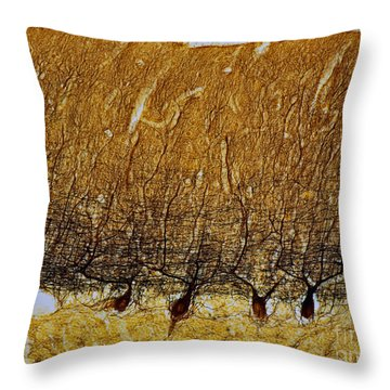 Pukinje Cells Lm Throw Pillow