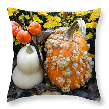 Pumpkin And Squash Throw Pillow
