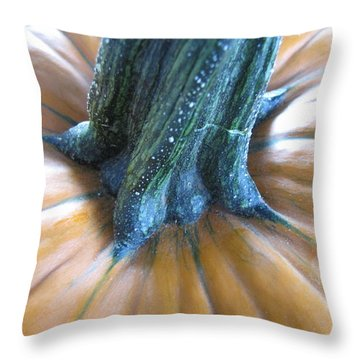 Throw Pillow featuring the photograph Pumpkin by Beth Vincent