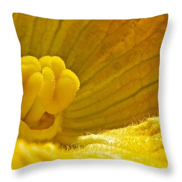 Throw Pillow featuring the photograph Pumpkin Blossom by Linda Bianic
