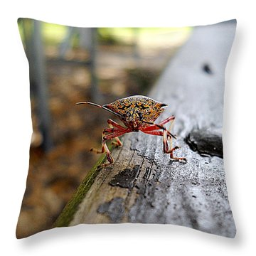 Pumpkin Bug  Throw Pillow