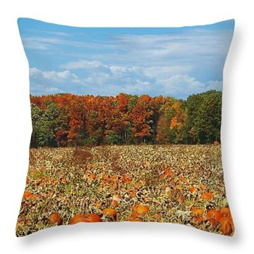 Pumpkin Patch - Panorama Throw Pillow