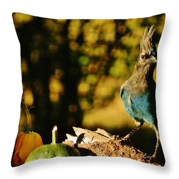 Punked-out Jay Throw Pillow by VLee Watson