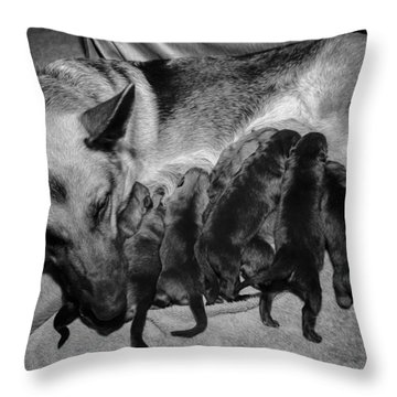 Puppies Nursing Throw Pillow