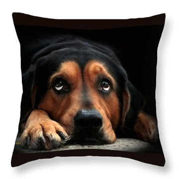 Throw Pillow featuring the mixed media Puppy Dog Eyes by Christina Rollo