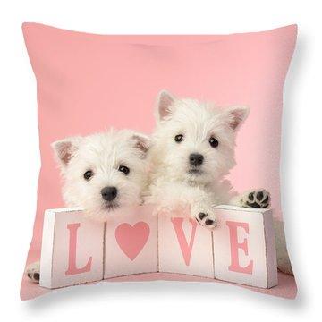 Puppy Love Throw Pillow by Greg Cuddiford