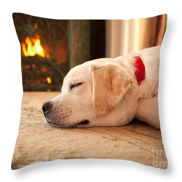 Puppy Sleeping By A Fireplace Throw Pillow by Diane Diederich