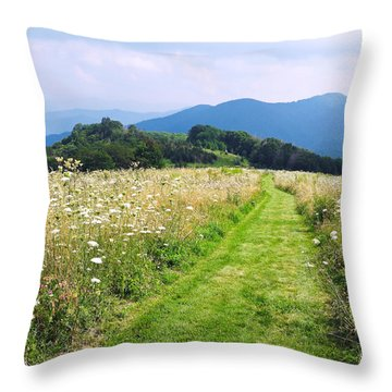 Purchase Knob Throw Pillow by Melinda Fawver