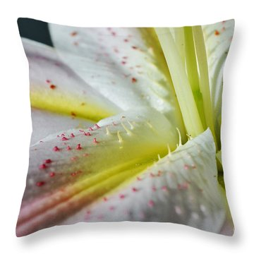 Pure And Fragrant Throw Pillow by Felicia Tica