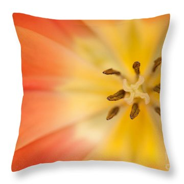Pure Bliss Throw Pillow by Beve Brown-Clark Photography