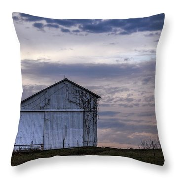 Throw Pillow featuring the photograph Pure Country by Sennie Pierson
