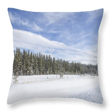 Pure Delight Throw Pillow