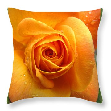 Throw Pillow featuring the photograph Pure Gold - Roses From The Garden by Brooks Garten Hauschild