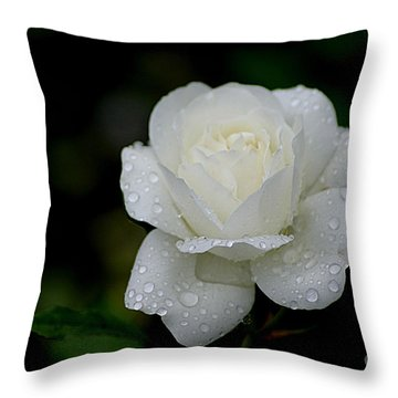 Pure Heaven Throw Pillow