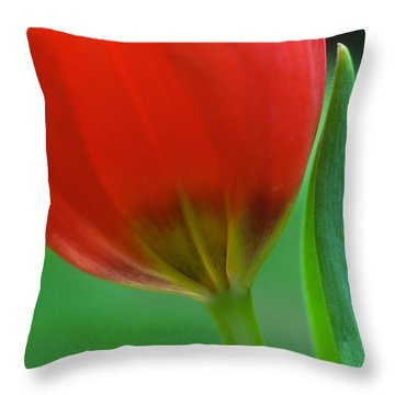 Pure Throw Pillow by Kathy Yates