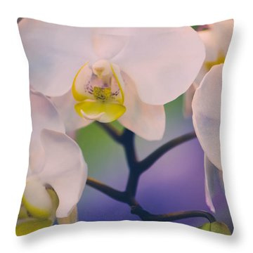 Pure Throw Pillow by Sara Frank