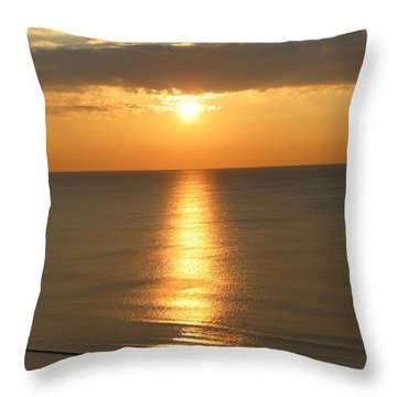 Pure Silk Throw Pillow by Judith Morris
