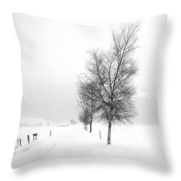 Pure White Throw Pillow