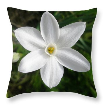 Pure White Throw Pillow