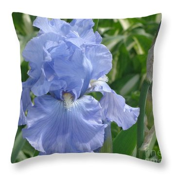 Purely Pretty Iris Throw Pillow