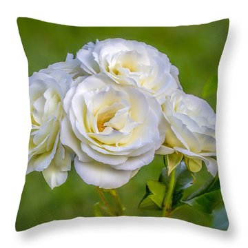 Pureness Of A Rose Throw Pillow