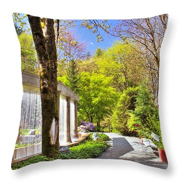 Purifying Walk Throw Pillow by Eti Reid