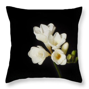 Throw Pillow featuring the photograph Purity   A White On Black Floral Study by Lisa Knechtel