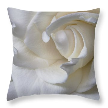 Purity All Profits Go To Hospice Of The Calumet Area Throw Pillow