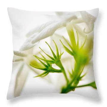 Purity Throw Pillow