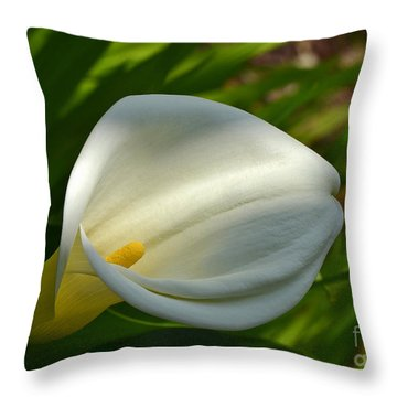 Throw Pillow featuring the photograph Purity by Kathy Baccari
