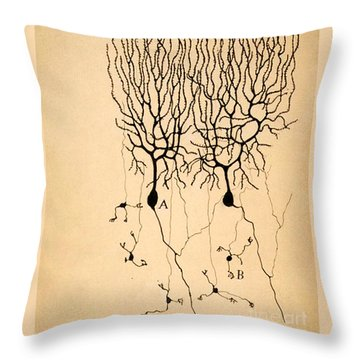 Nerve Cell Home Decor
