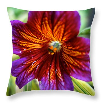 Purple And Orange Throw Pillow