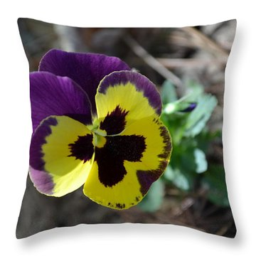 Throw Pillow featuring the photograph Purple And Yellow Pansy by Tara Potts