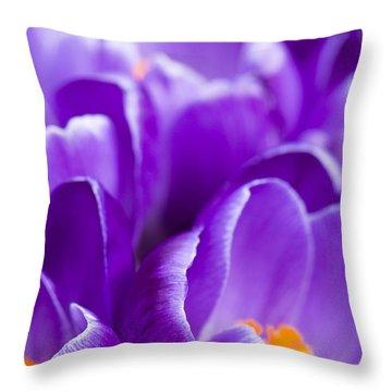 Purple Throw Pillow by Anne Gilbert