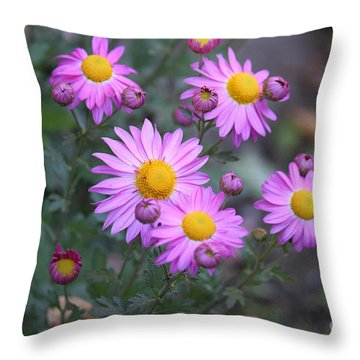 Purple Asters Throw Pillow by Lena Auxier
