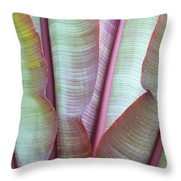 Throw Pillow featuring the photograph Purple Banana by Evelyn Tambour