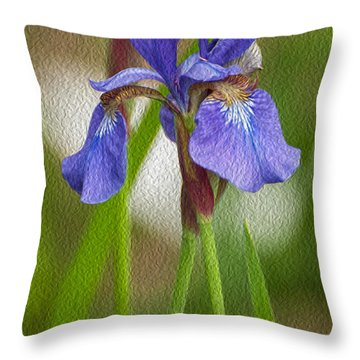 Purple Bearded Iris Oil Throw Pillow