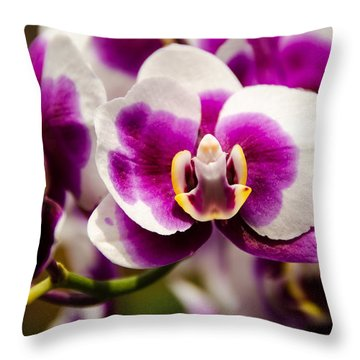 Throw Pillow featuring the photograph Purple Beauty by Penny Lisowski