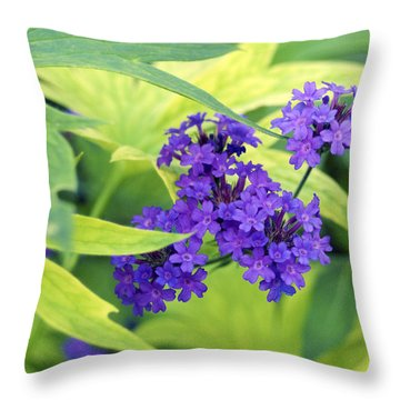 Throw Pillow featuring the photograph Purple Bunch  by Haleh Mahbod