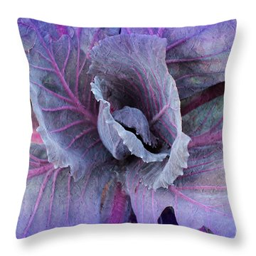 Purple Cabbage - Vegetable - Garden Throw Pillow
