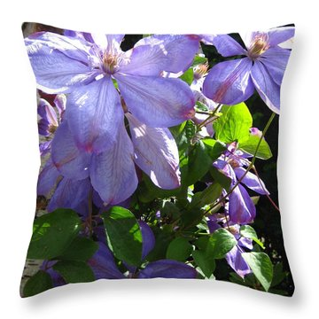 Throw Pillow featuring the photograph Purple Clematis by Susanne Baumann