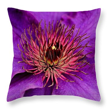 Throw Pillow featuring the photograph Purple Clematis by Suzanne Stout