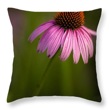 Purple Cone Flower Portrait Throw Pillow