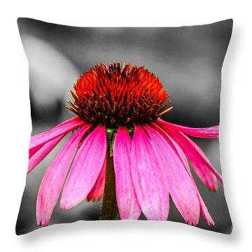 Purple Coneflower - Sc Throw Pillow