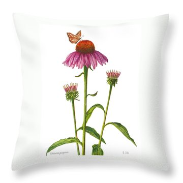 Purple Coneflower - Echinacea Purpurea  Throw Pillow
