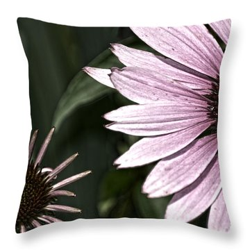 Purple Coneflower Imperfection Throw Pillow