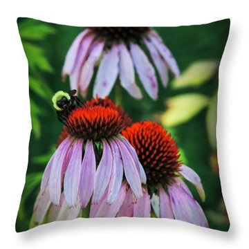 Throw Pillow featuring the photograph Purple Coneflowers 001 by Lance Vaughn