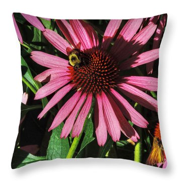Throw Pillow featuring the photograph Purple Coneflowers 003 by Lance Vaughn