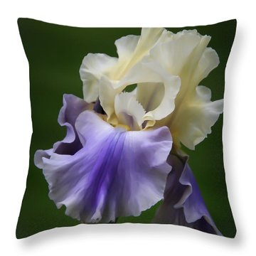 Throw Pillow featuring the photograph Purple Cream Bearded Iris by Patti Deters